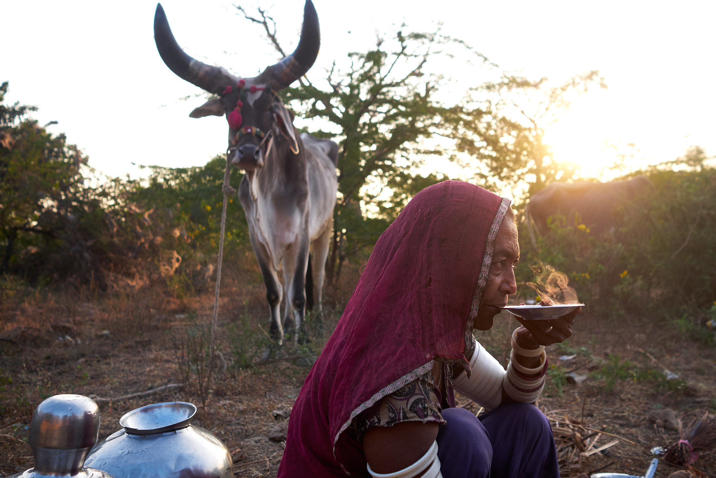 Nomad woman with a tea saucer