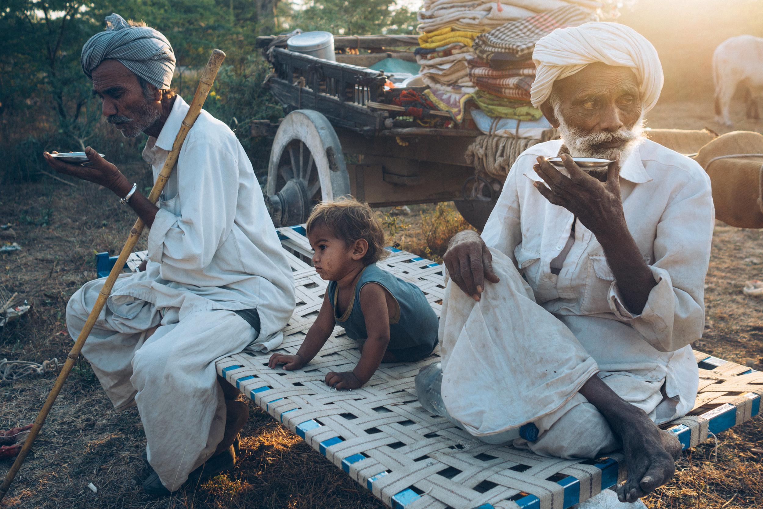 Nomad grandfathers drink tea