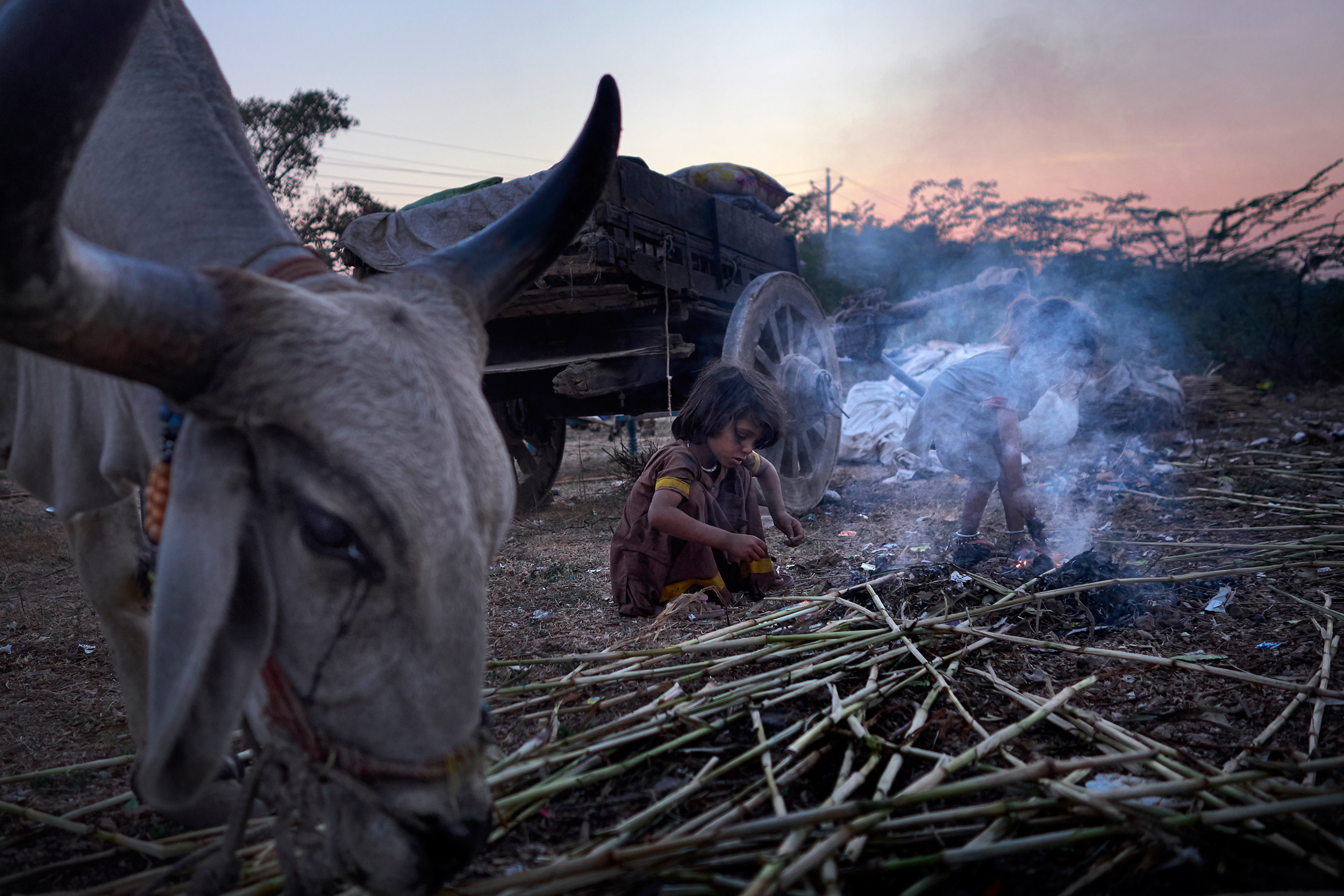 Nomad sisters making a fire