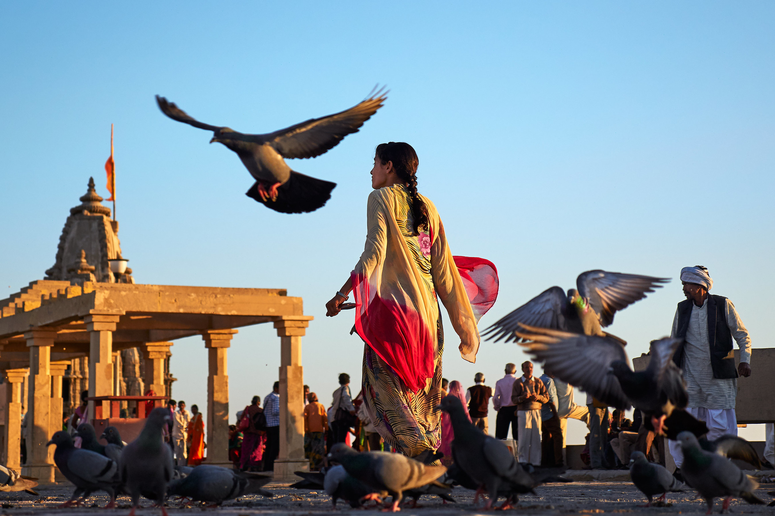 Pigeons in the air at Dwarka