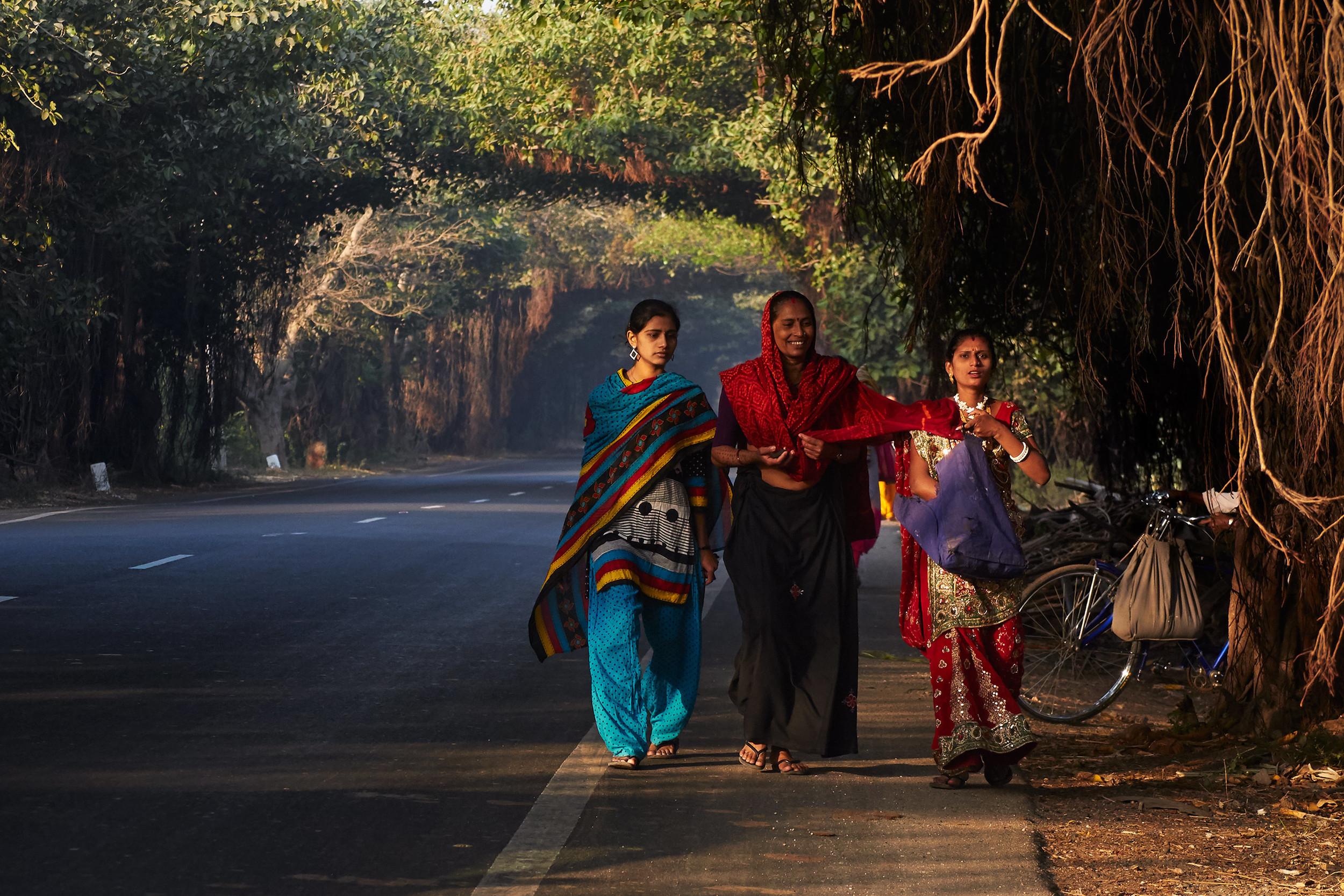 Women walking through tunnels of banyan trees along a road