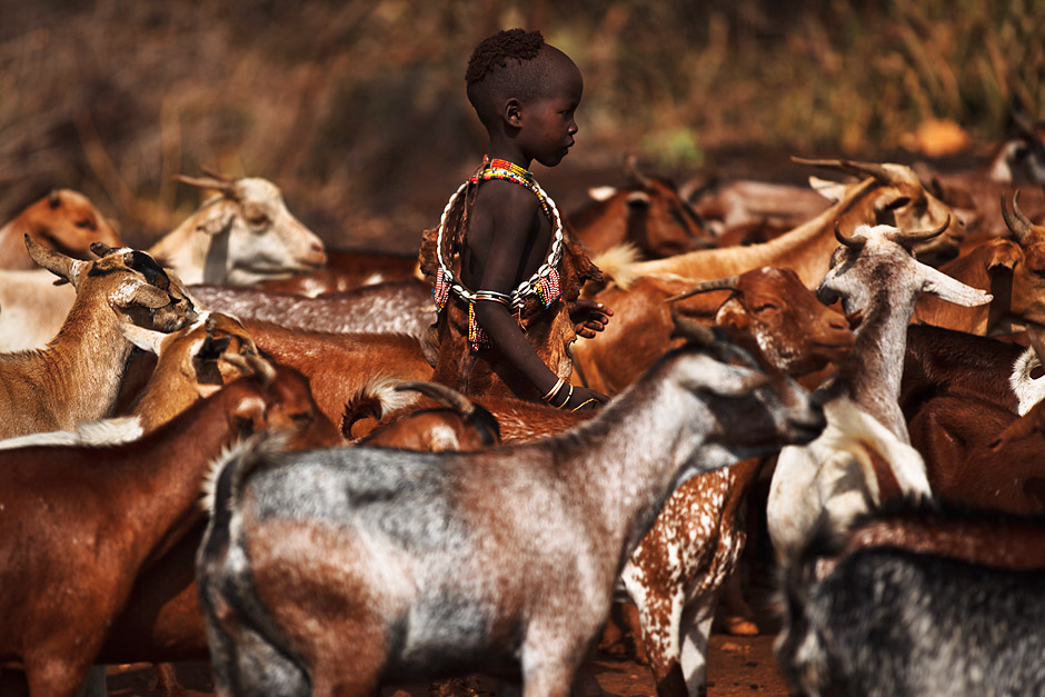Hamer girl herding goats towards their homes