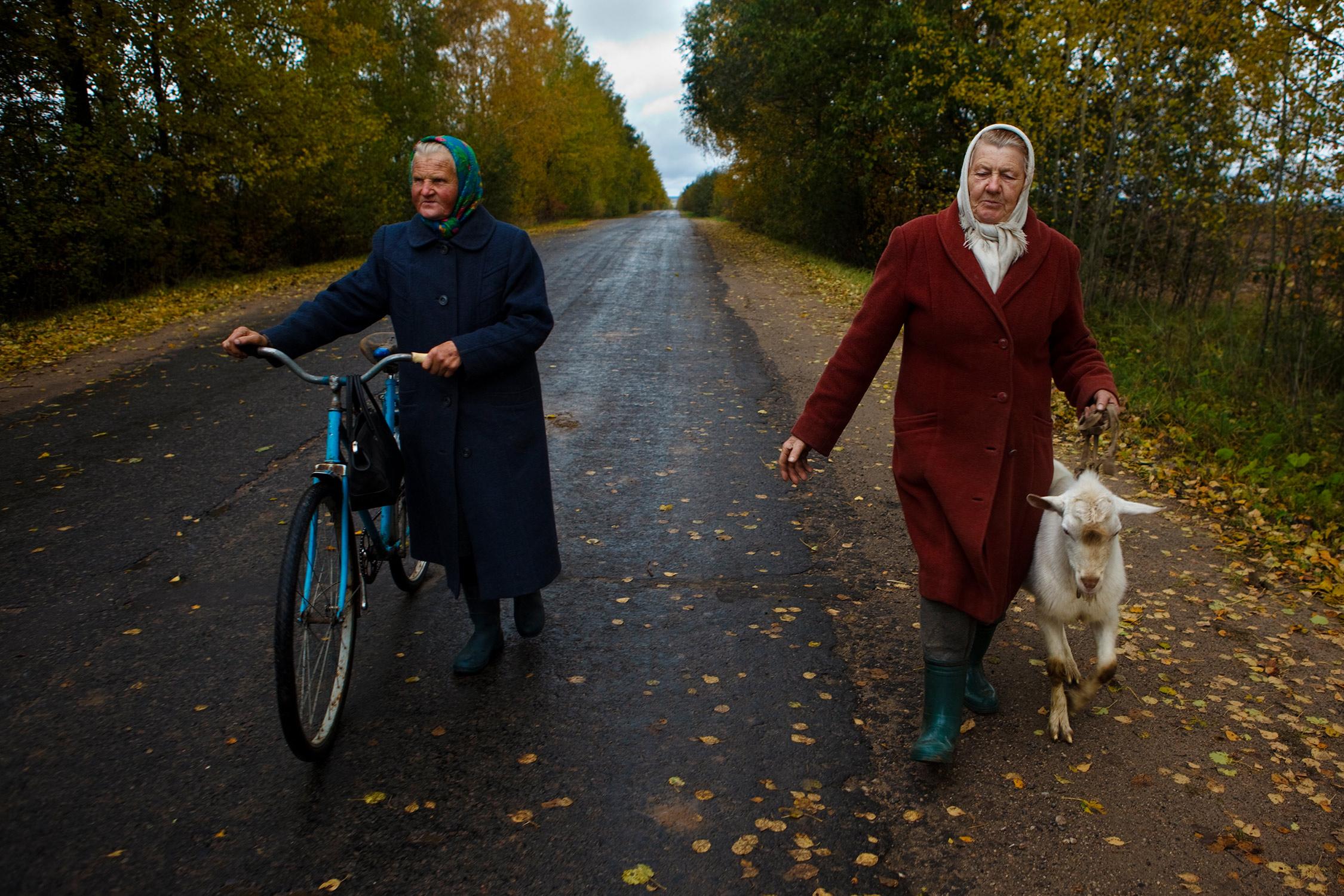 Elderly women talking with their goats along a road in Belarus