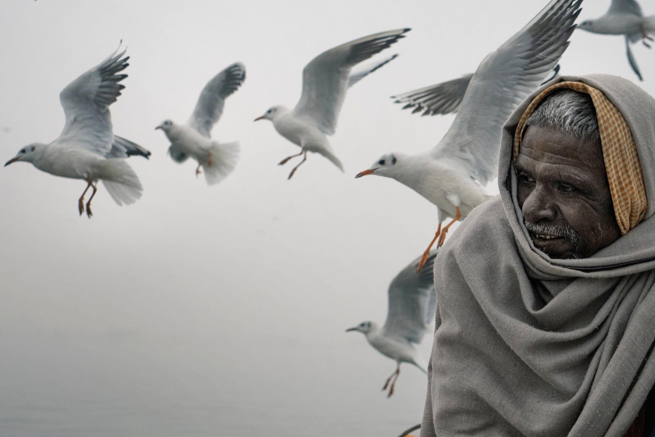 Vranasi boatman with birds behind him