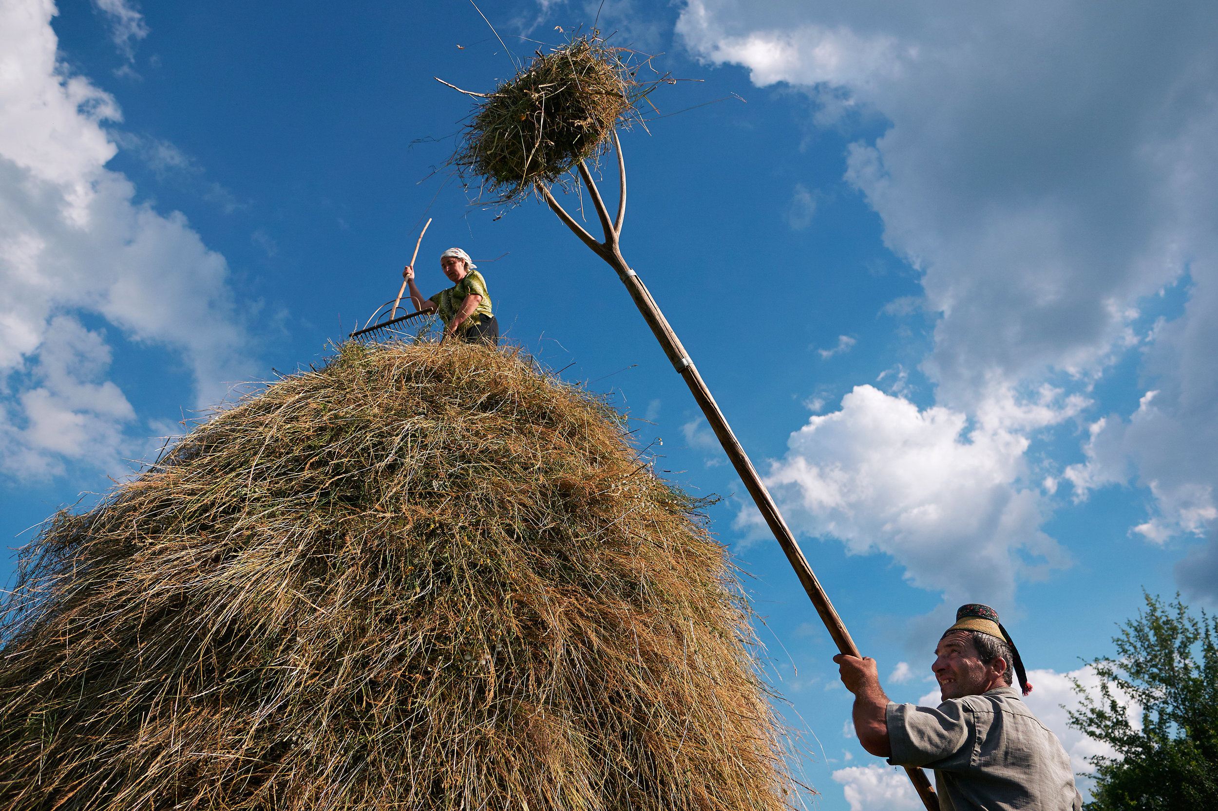 Man-and-wife-stacking-hay-Maramures-Romania