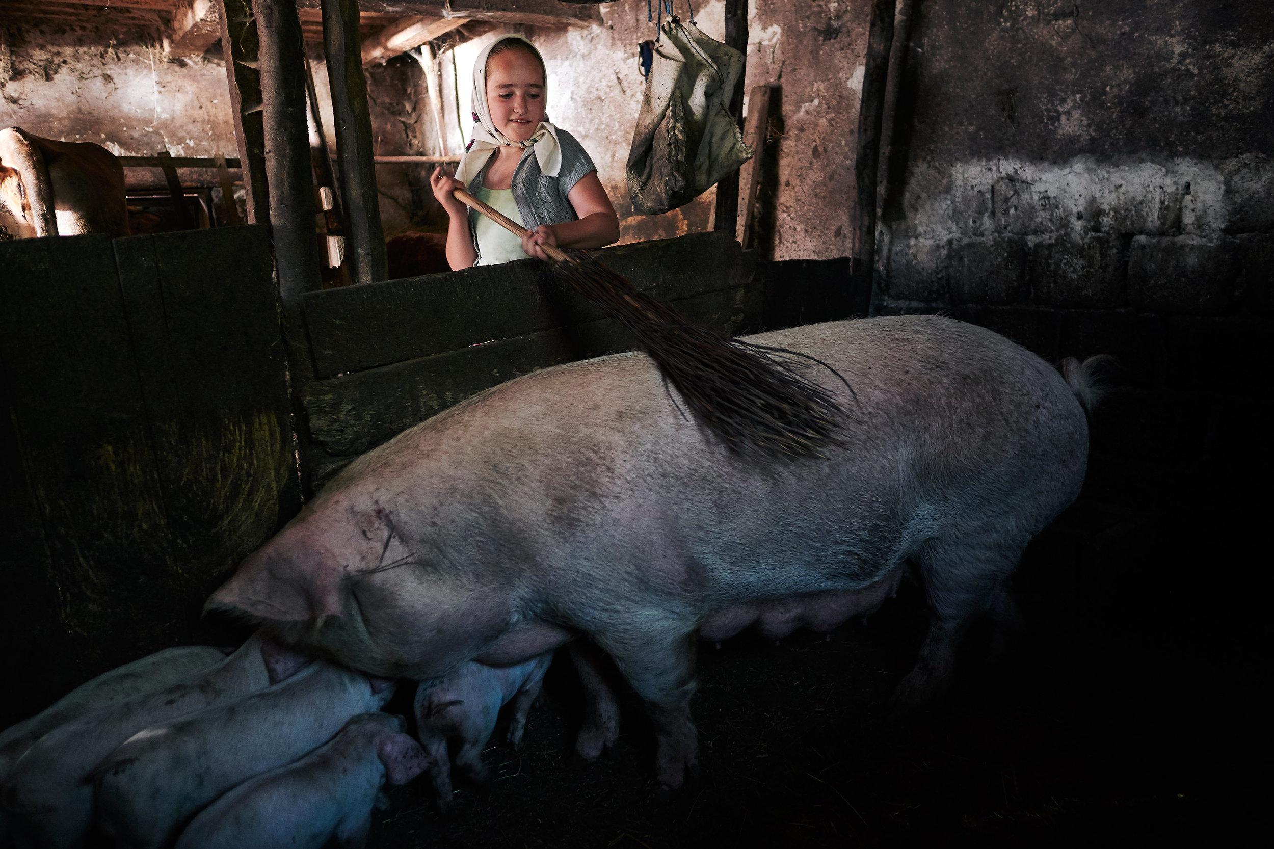 Rural-girl-feeds-pig-Maramures-Romania