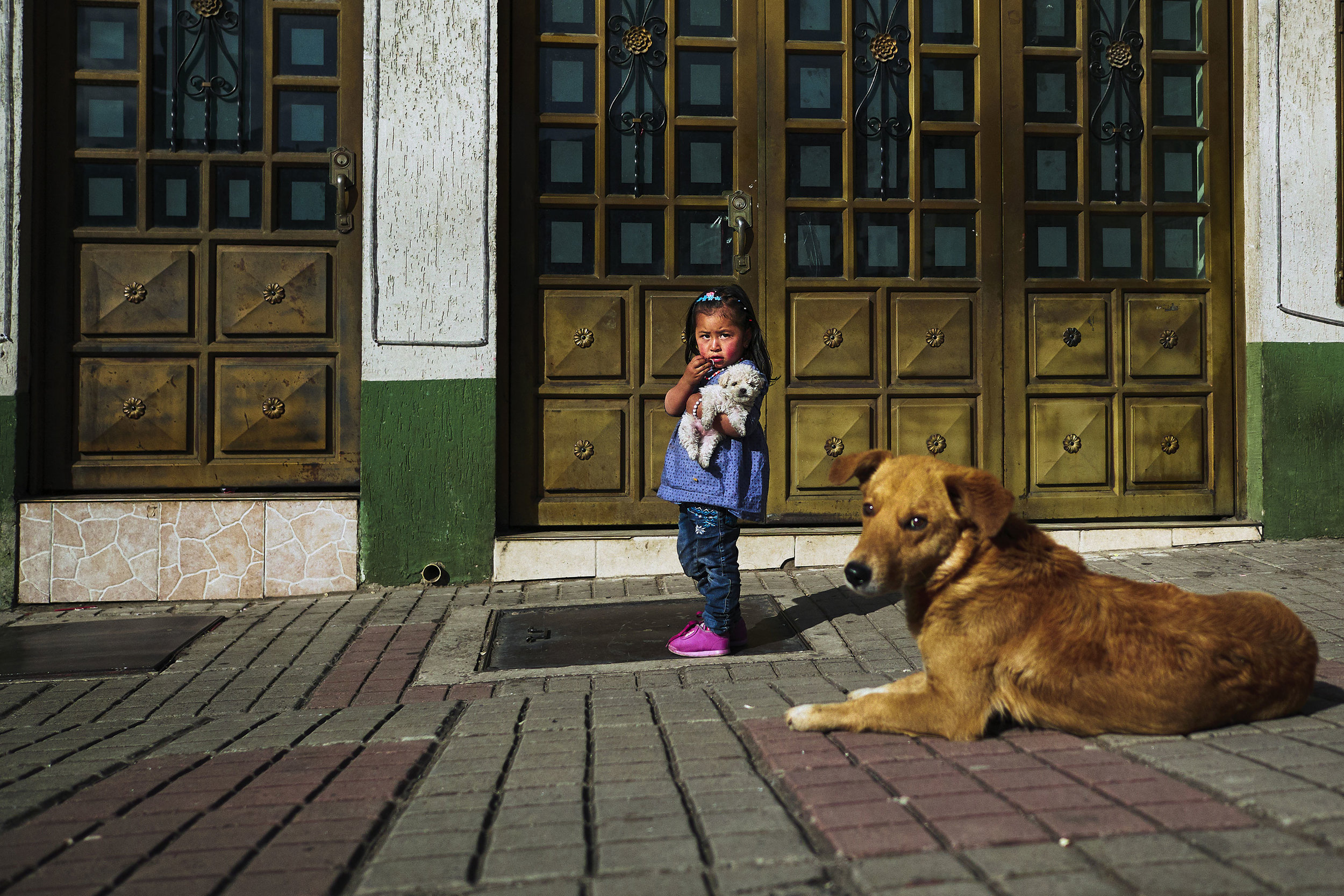 little girl with dog Mongua
