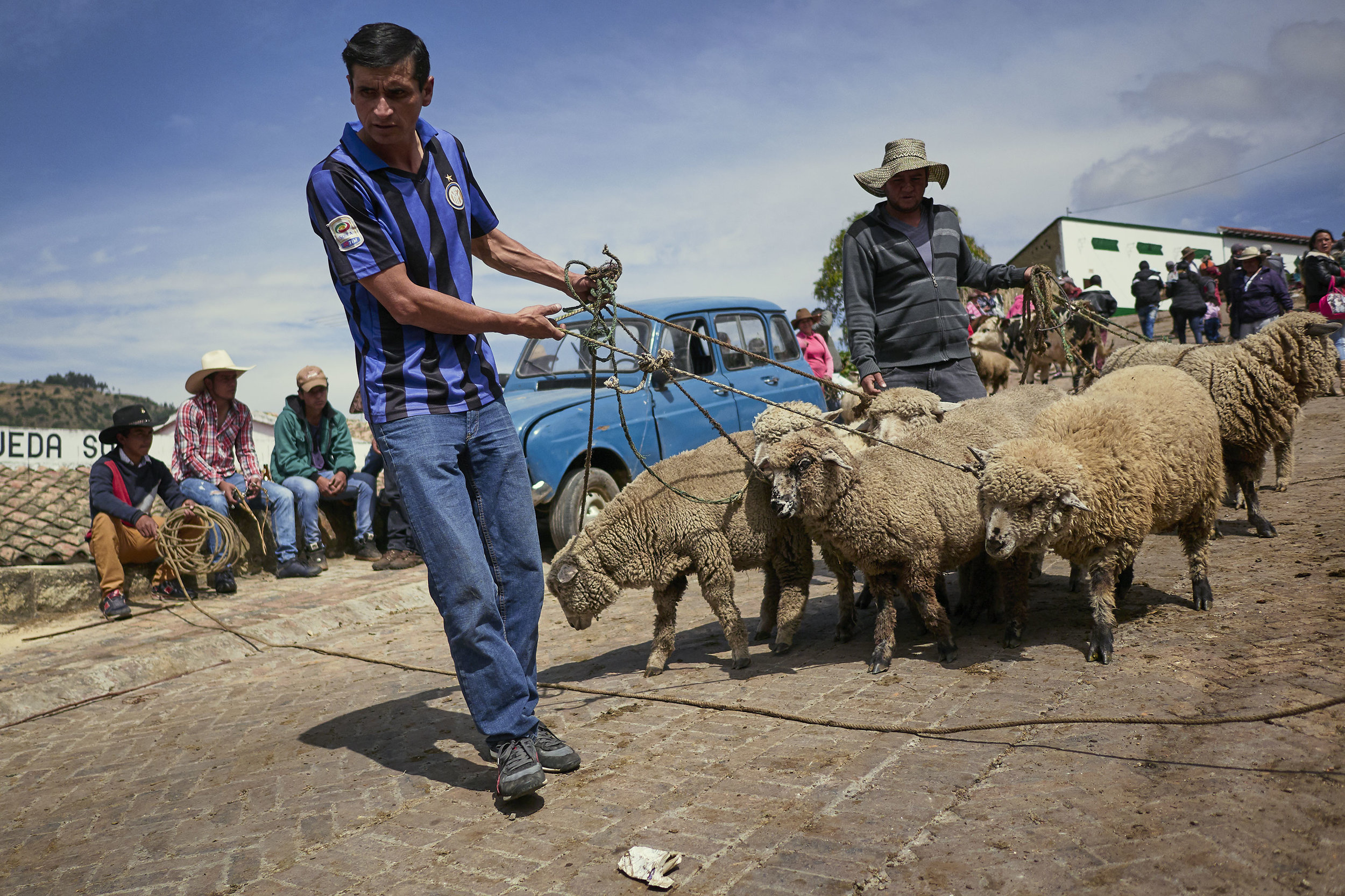 Men with sheep at animal market in Mongui, Colombia