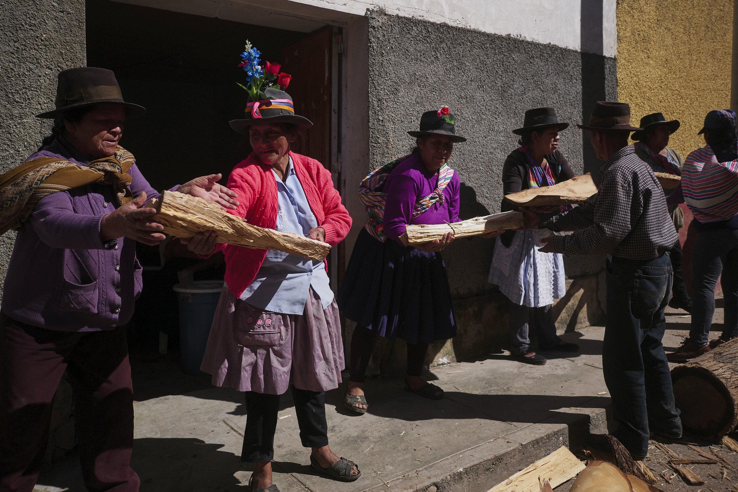 Palo alto Peru