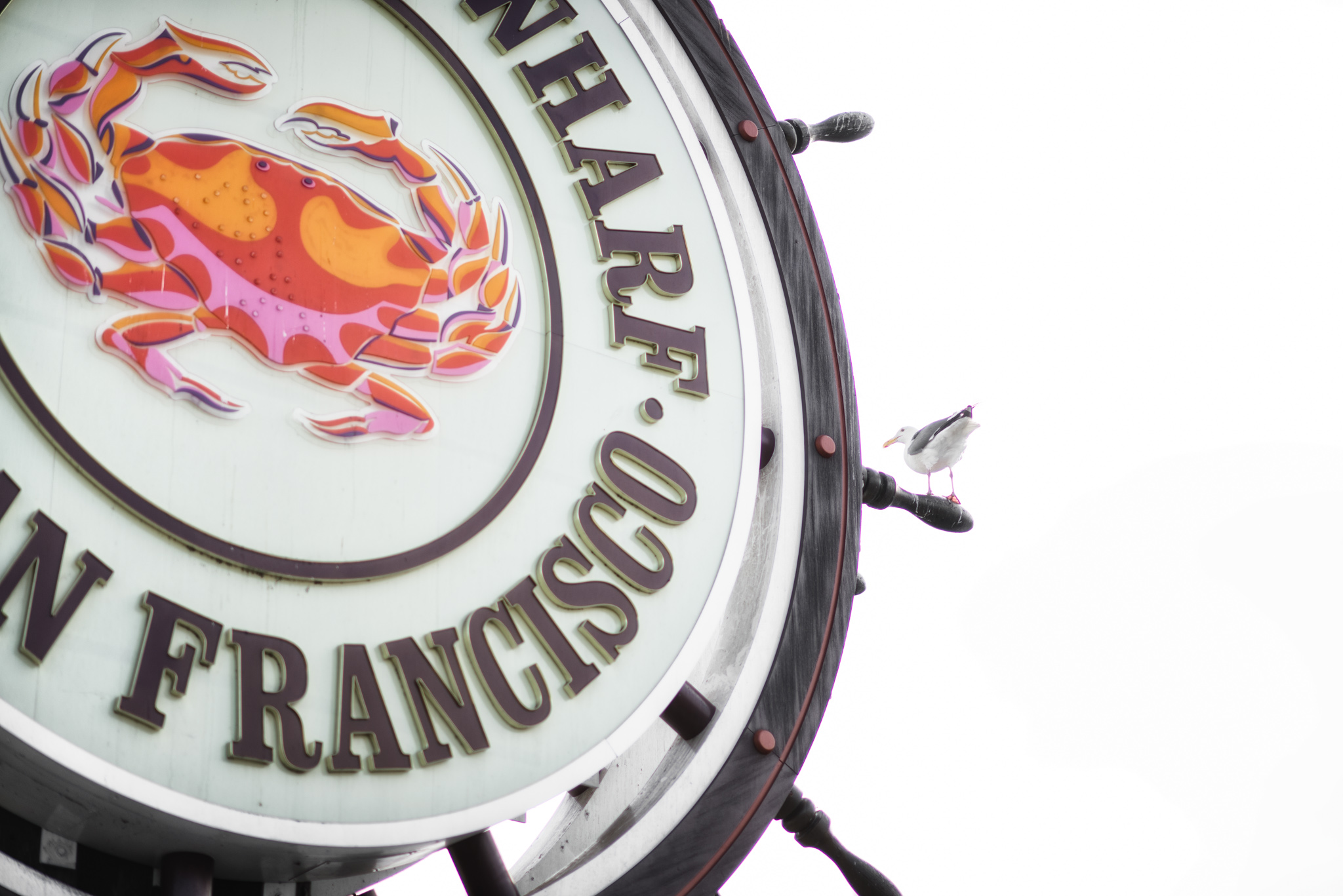 Fisherman's Wharf  |  San Francisco, California