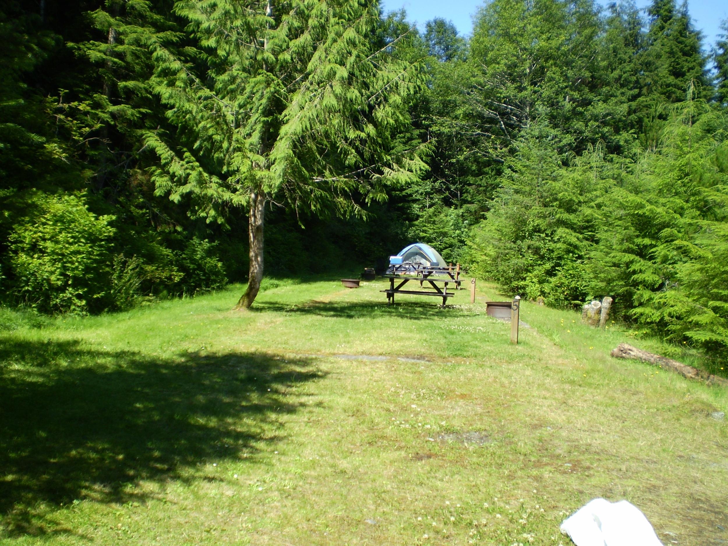 Campsite Tent Area