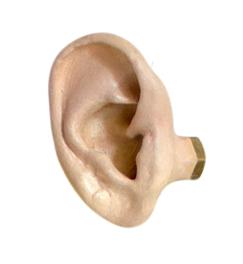 earbutton.jpg