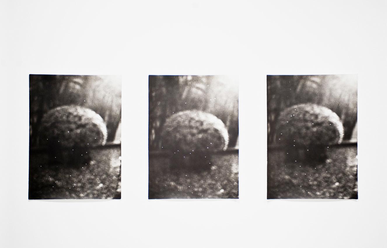 Jochen Lempert, Untitled (Constellations), 2010. Set of 3 silver gelatin prints, 24 x 18 cm each..jpg