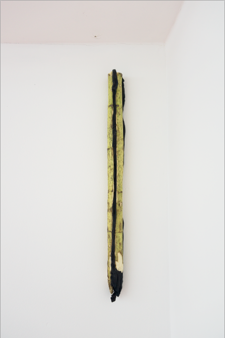 Michael E. Smith,  Untitled , 2014. Sunflower stalk, t-shirt. 36.8 x 12.6 x 10.2 inches (8 x 32 x 26 cms)