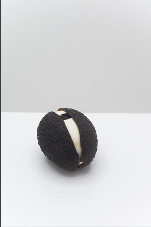 Martín Soto Climent, Huevocado (which came first el huevo or the avocado?), 2012, Avocado and eggshels, 8 x 6 x 6 cm