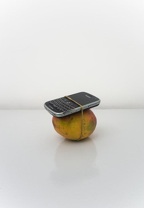 Wilfredo Prieto, Miren el tamaño de este mango (Look at the size of this mango), 2011, Mango, blackberry and rubber band, Dimensions variable