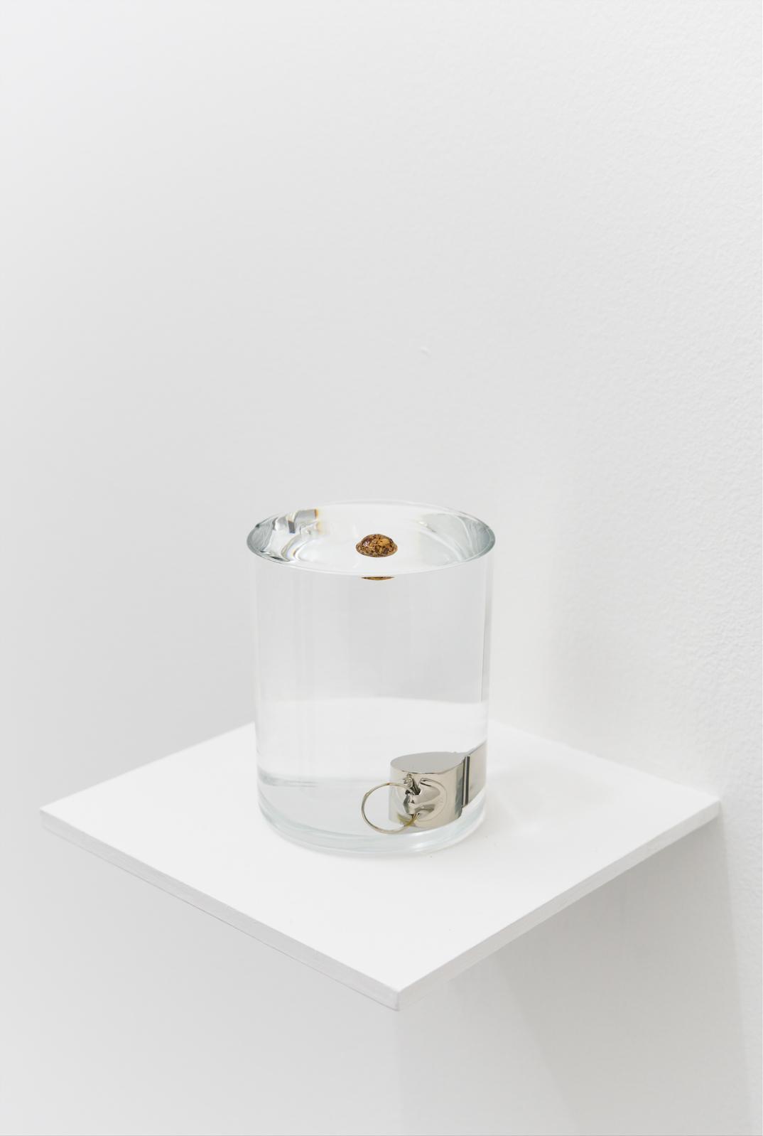 Zarauhie Abdalian, Buoy, 2014, Whistle, cork ball, glass, water, 9.2 x 7.3cm