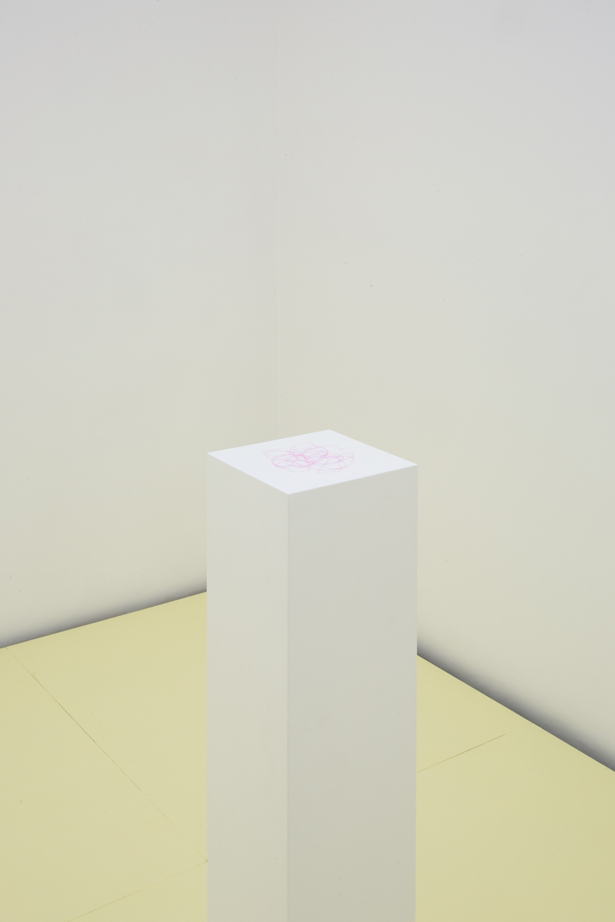 Pink Thread, 2017. Installation, piece of thread on plinth (Unique), dimensions variable.