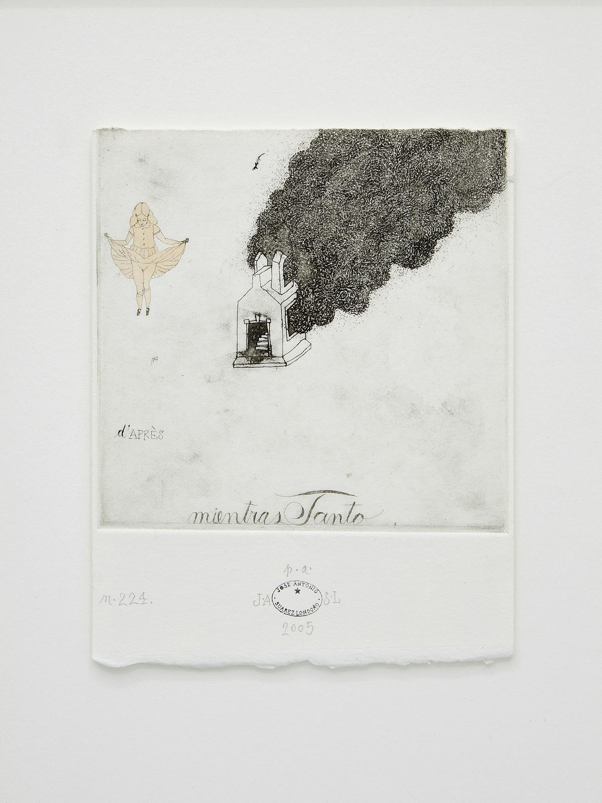 José Antonio Suárez Londoño, Untitled #224, 2005.