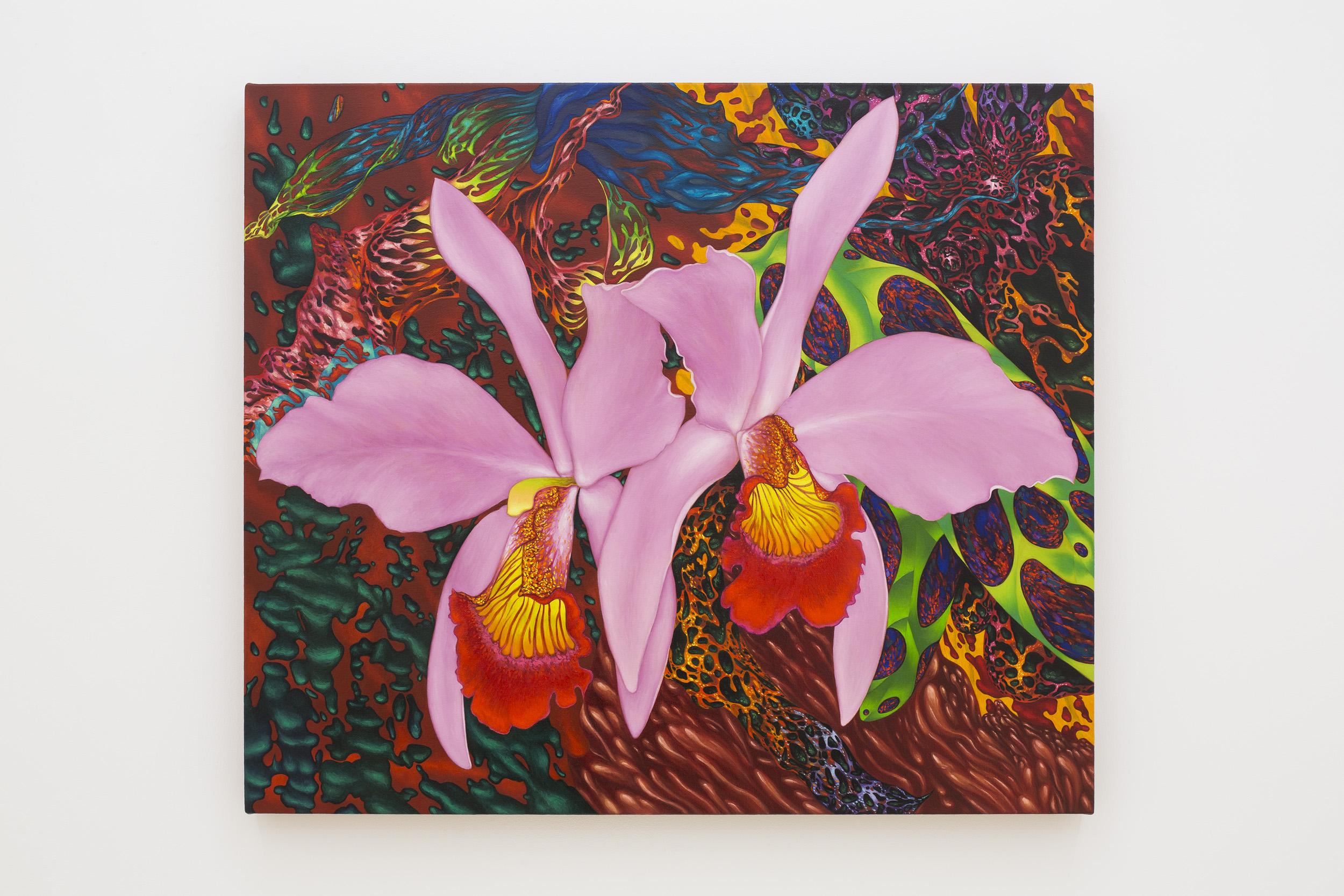 """Tom Allen """"Cattleya"""", 2017 - 2019. Oil on canvas, 58.4 x 58.5 cm (23 x 27 in.)"""