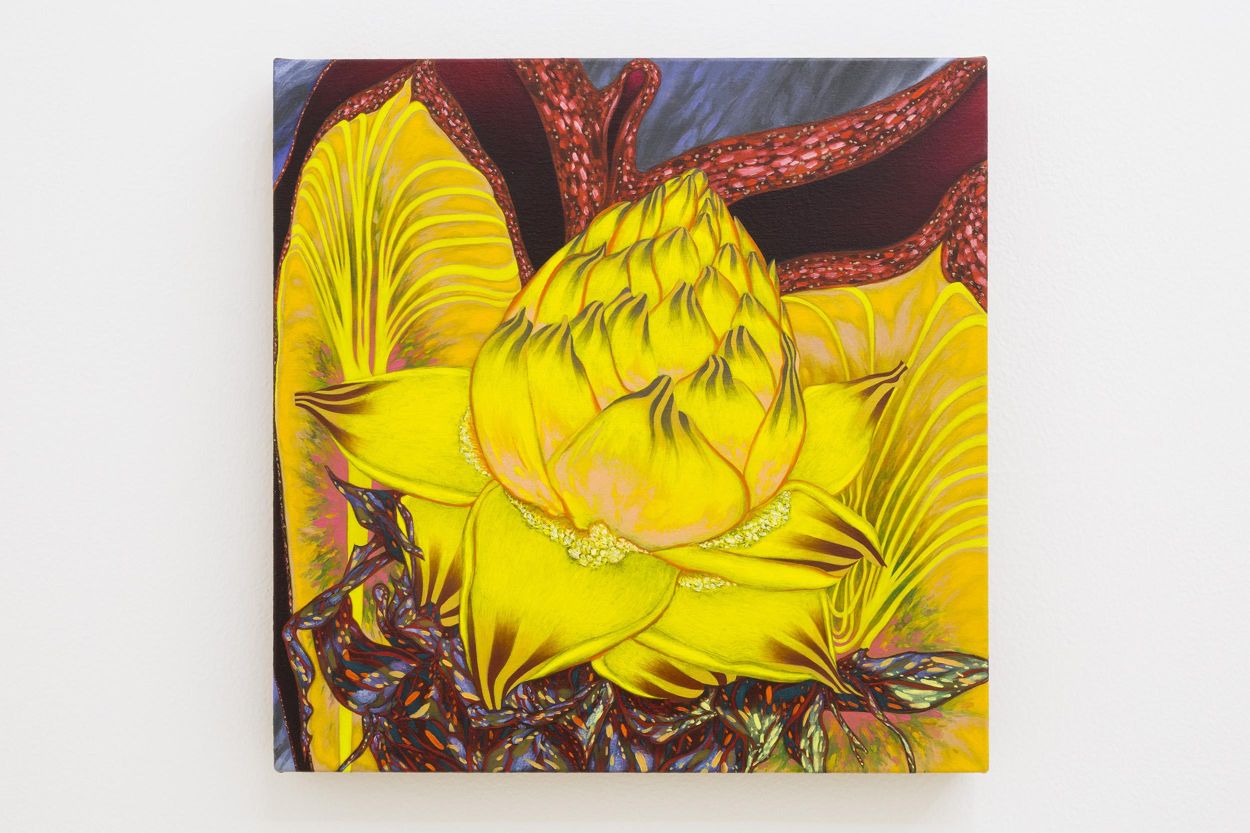 """Tom Allen """"Musella Lasiocarpa"""", 2018. Oil on canvas, 33 x 33 cm (13 x 13 in.)"""