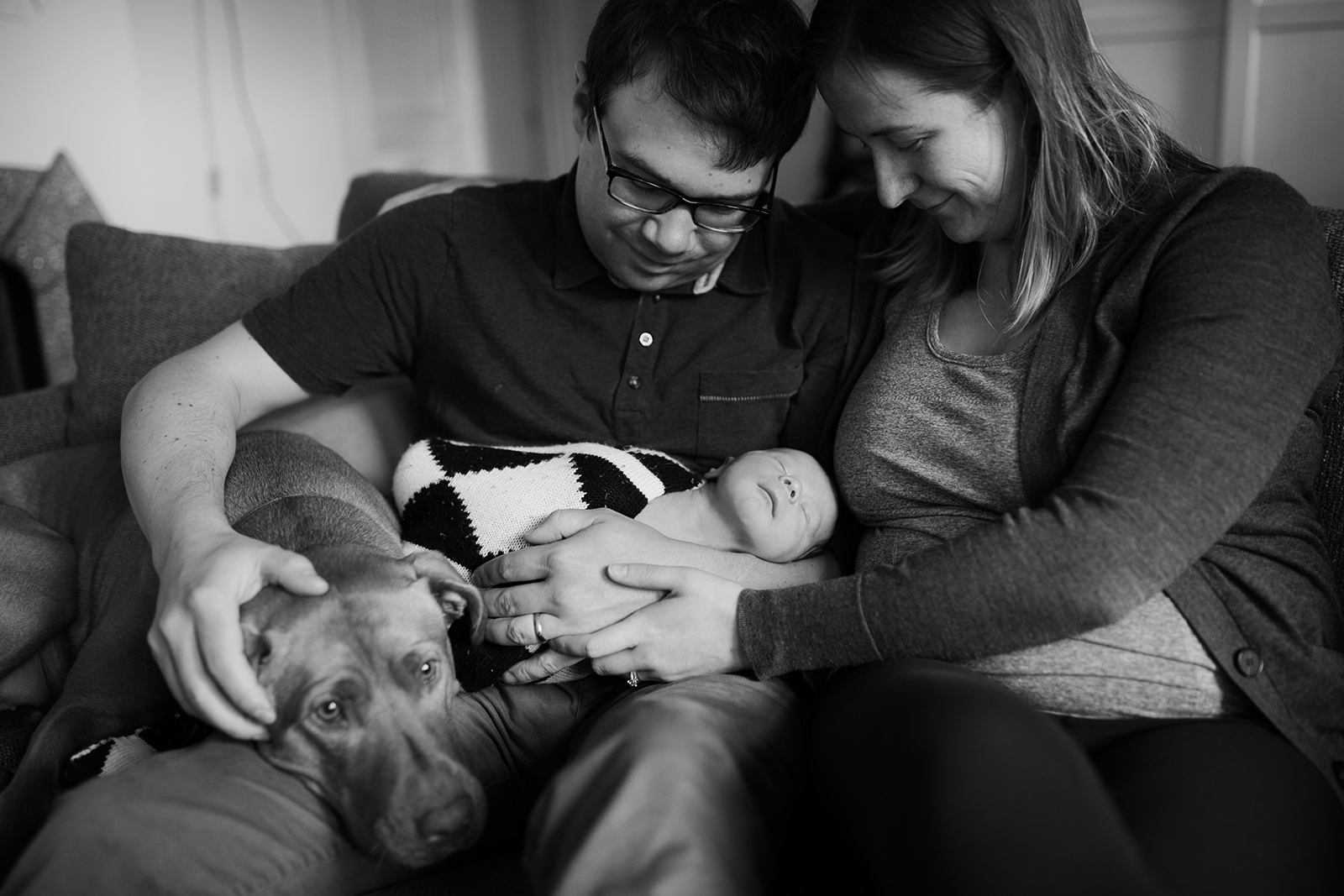 catie-bergman-seattle-family-newborn-lifestyle-photography-dog3.jpg