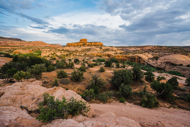 catie-bergman-adventure-elopement-photographer-utah-southwest-arizona-desert-catie-bergman-photography-pnw-newborn-portrait-lifestylephotography_0029.jpg
