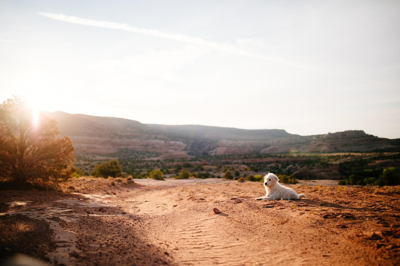 catie-bergman-adventure-elopement-photographer-utah-southwest-arizona-desert-catie-bergman-photography-pnw-newborn-portrait-lifestylephotography_0041.jpg