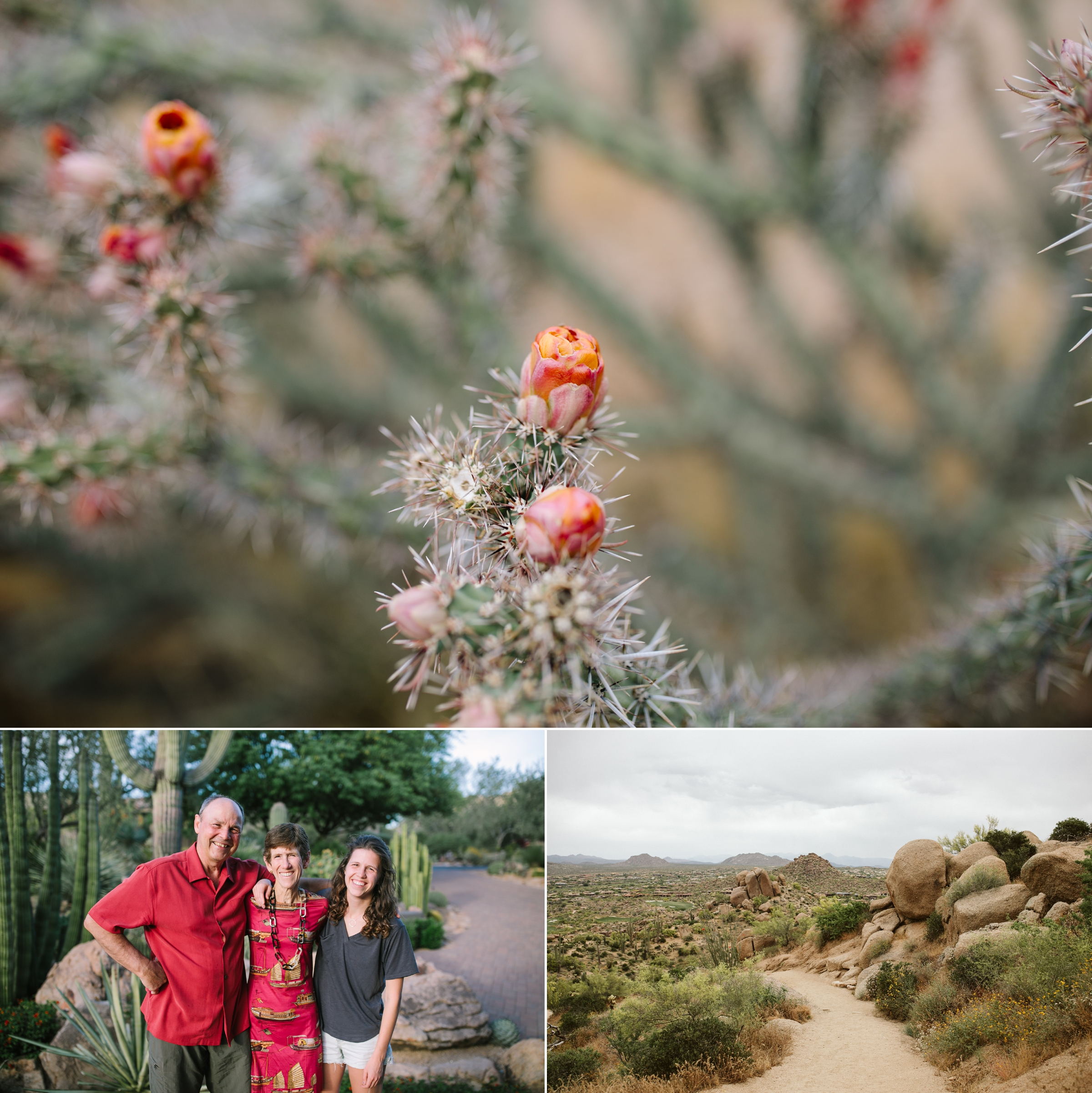 catie-bergman-arizona-southwest-hipster-seattlefamily-seattle-family-pnw-first-birthday-lifestylephotography-catie-bergman-photography-elopement-landscape-travel-wedding-pnw-portrait-lifestylephotography-vsco-northwest-friends-love_0022.jpg