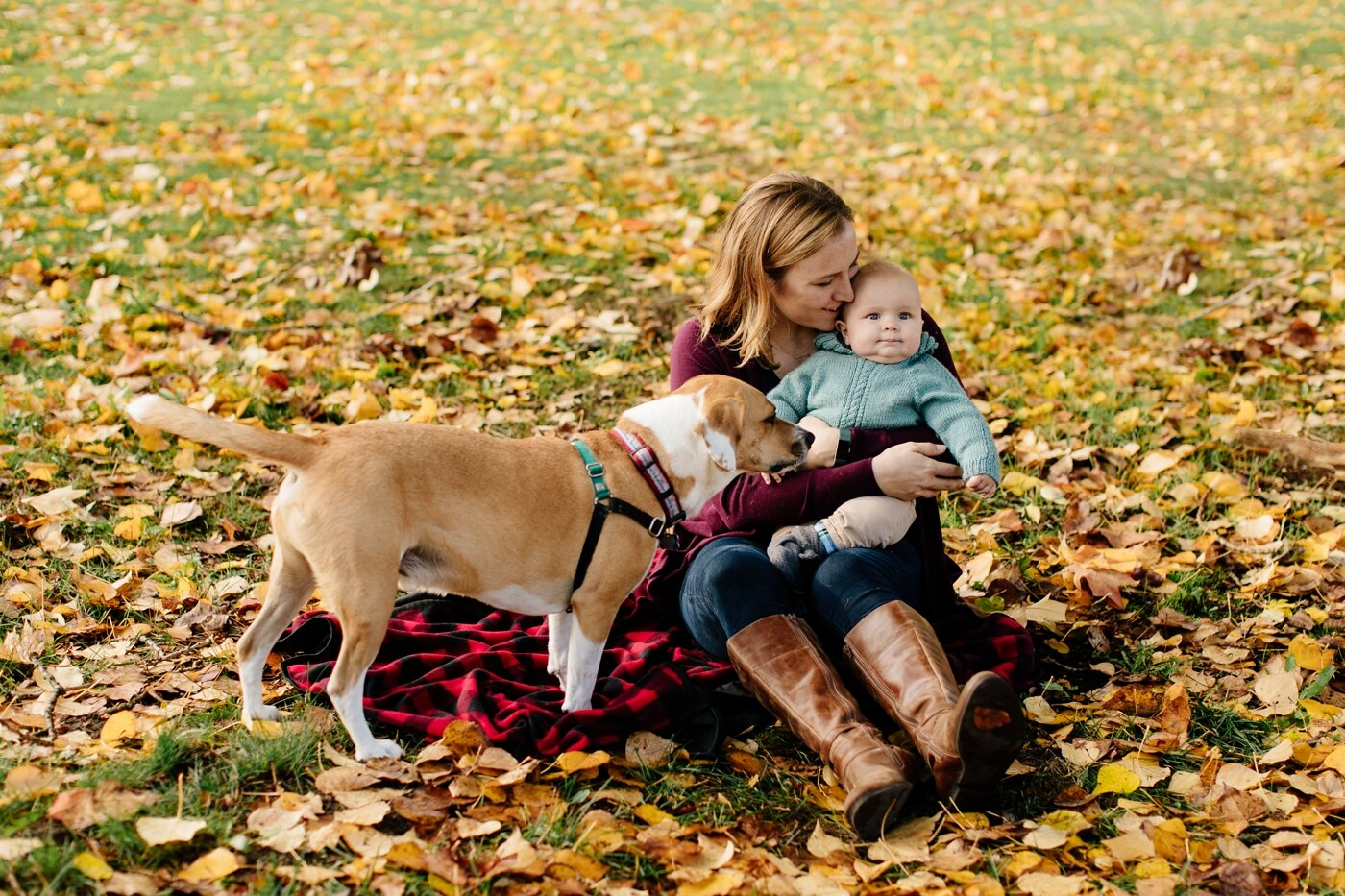 fall-seattle-family-lifestyle-photographer_0161.jpg