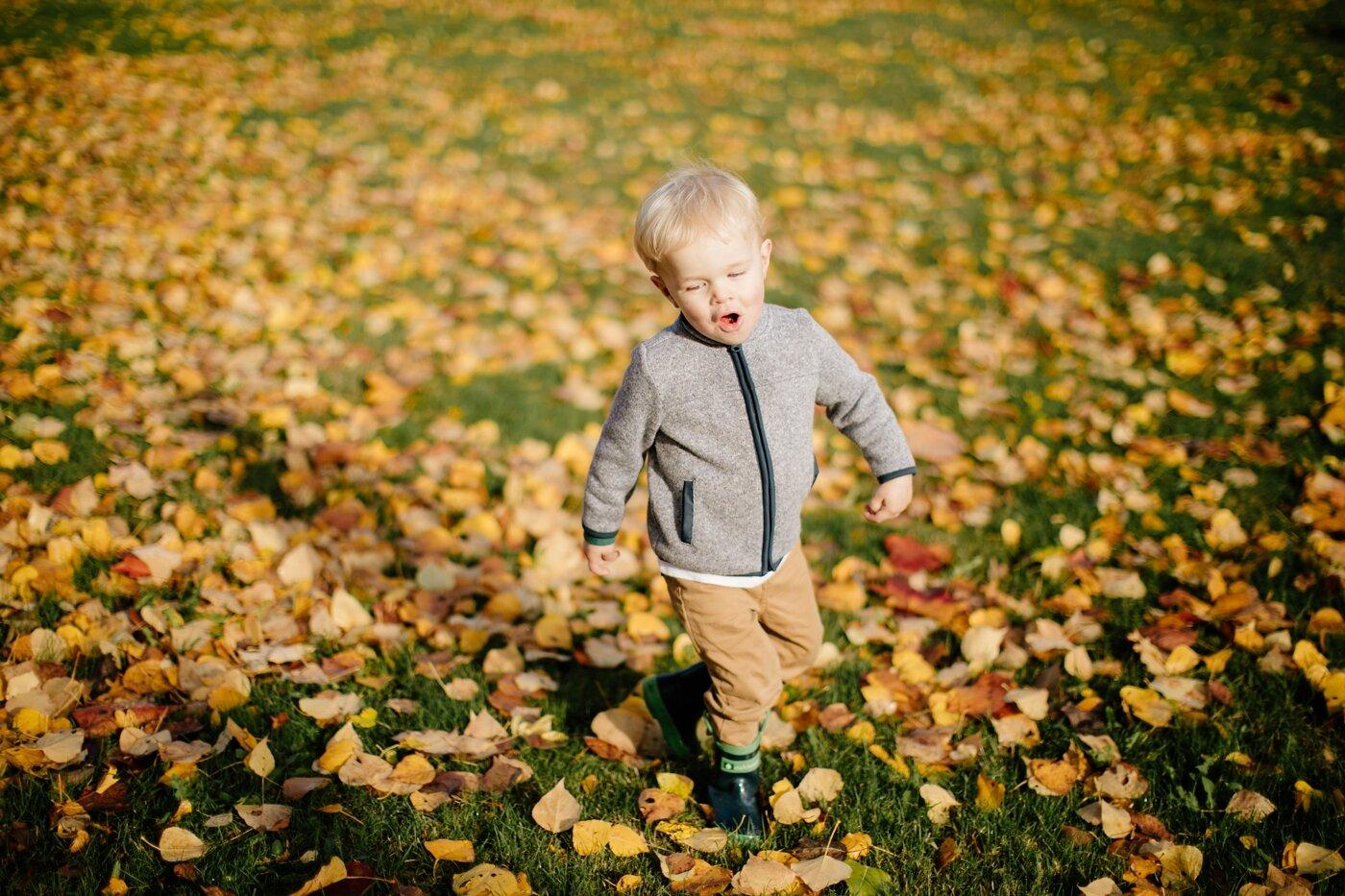 fall-seattle-family-lifestyle-photographer_0148.jpg