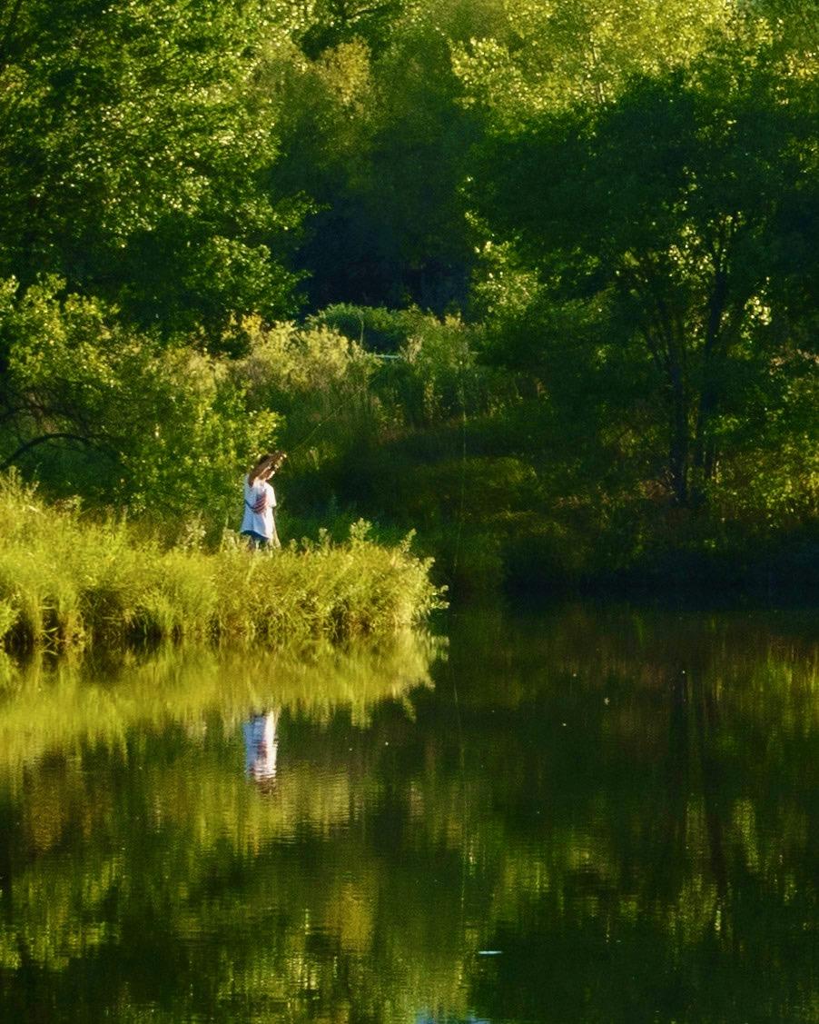 Fishing for Skeeters