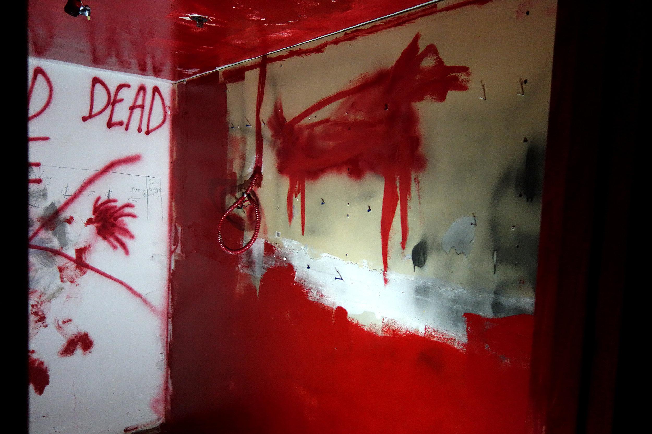 Our Wild Dead Horse room 2.jpg