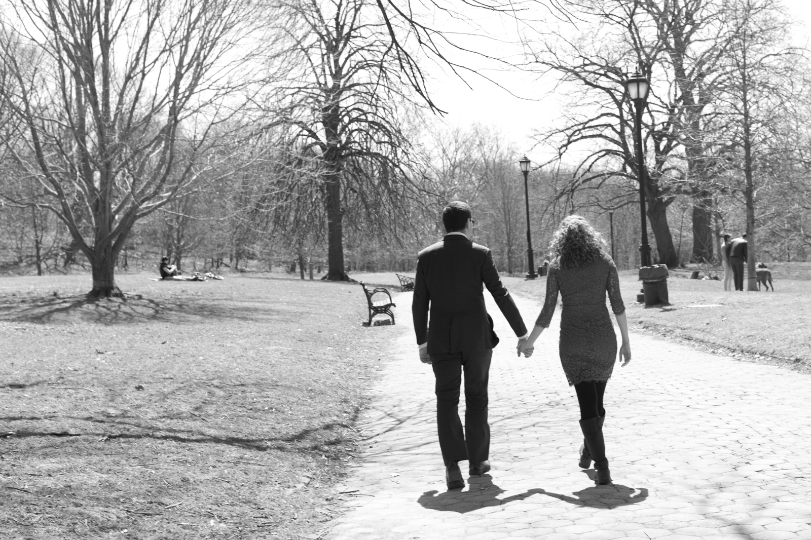 engagement photos in prospect park