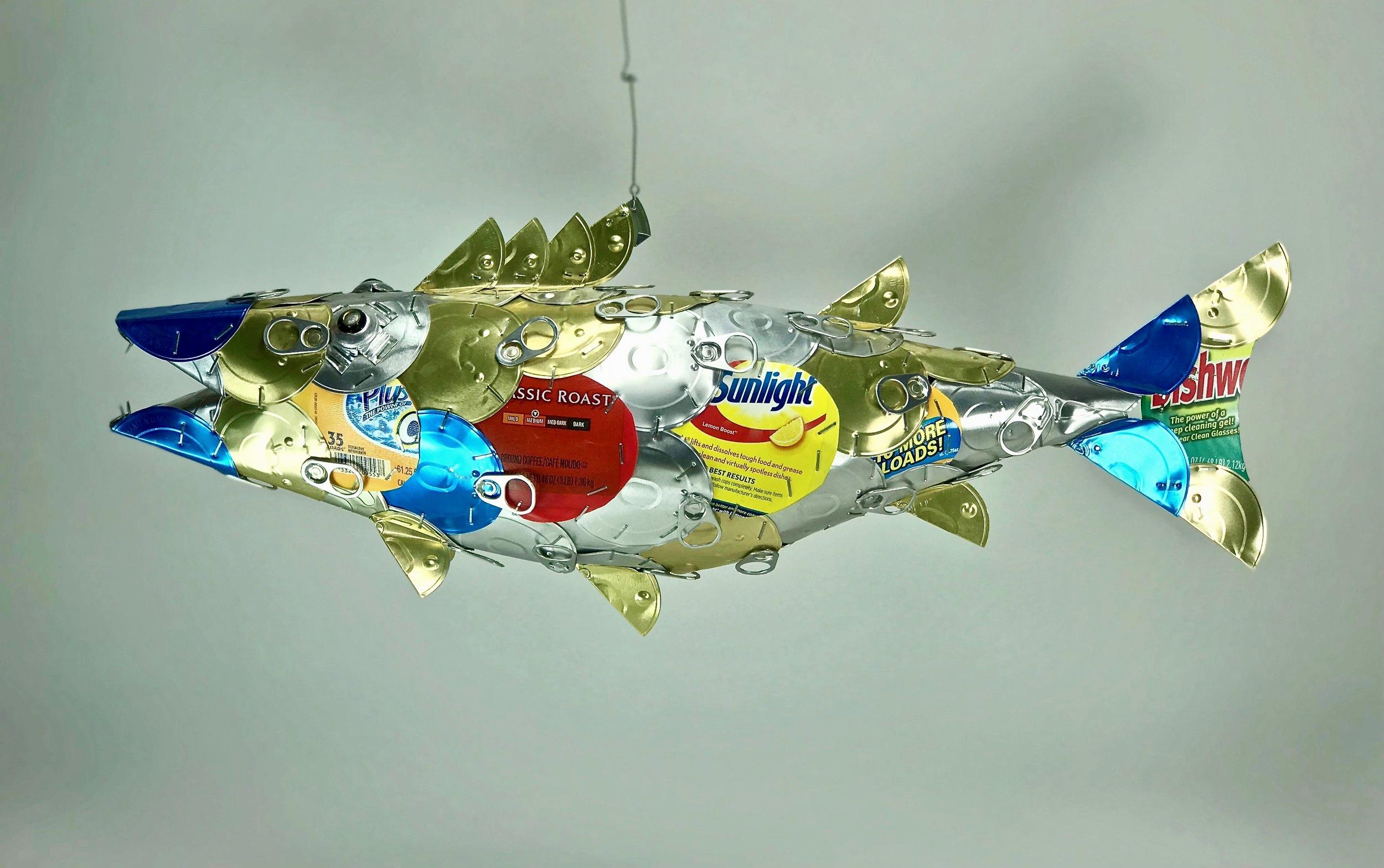 JRichards-fish.jpg