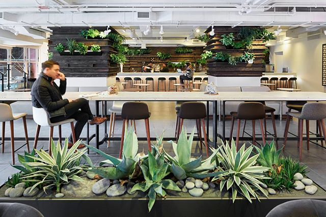 Have you ever seen a co-working space quite this beautiful? @theassemblagenyc has an amazing membership program offering this gorgeous shared space, incredible ayurvedic dining, a wide array of weekly classes (including yoga, meditation and cultural panels) and the most welcoming staff who will make you feel right at home. Did I mention they offer long term stays? Contemplating moving in 🙇🏽‍♀️ #assemblagenyc #ayurvediccooking #hotforhotels