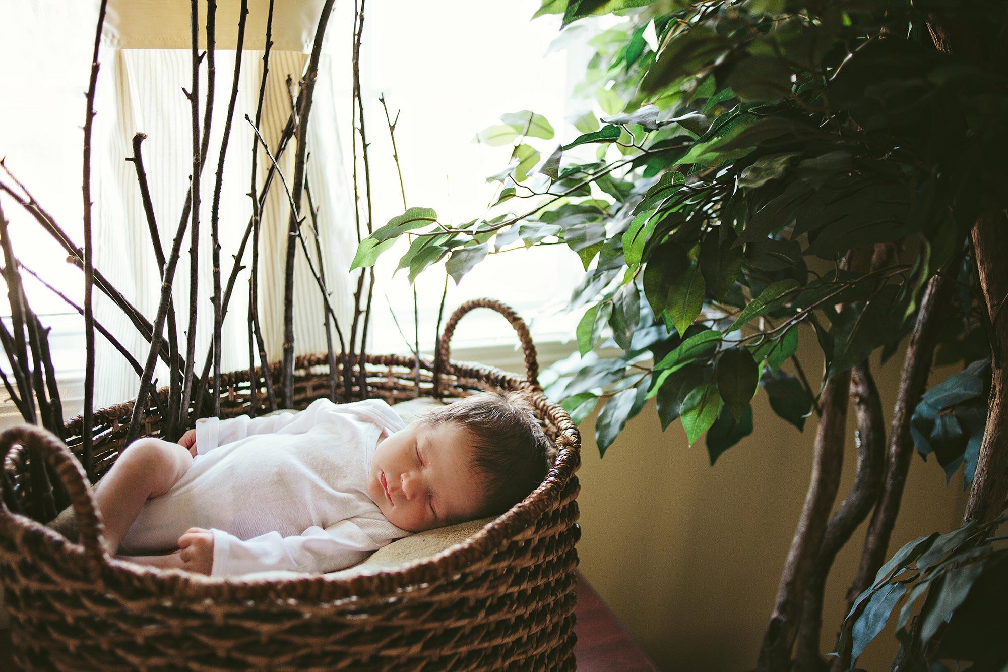 NewbornPortfolio34.jpg