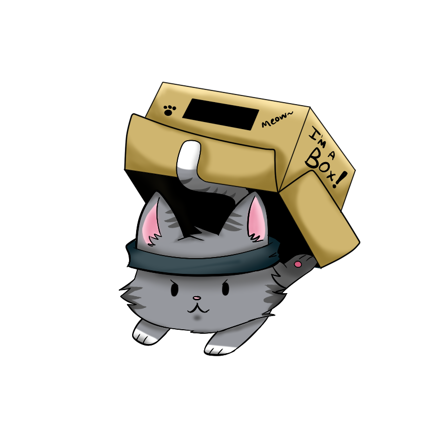 solidkitty.PNG