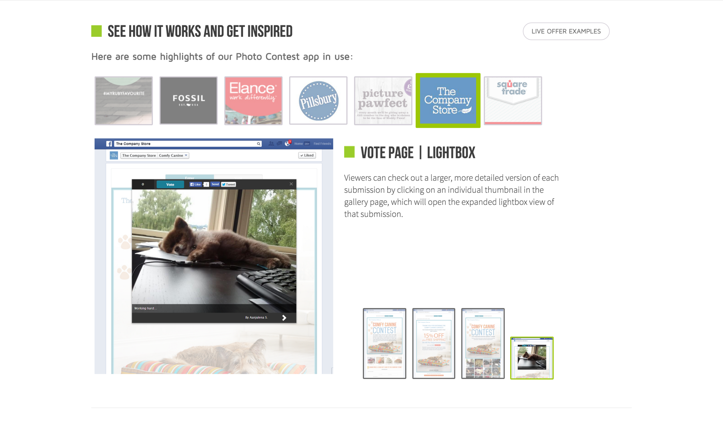 Photo Contest App Inspiration | Vote Page Lightbox View