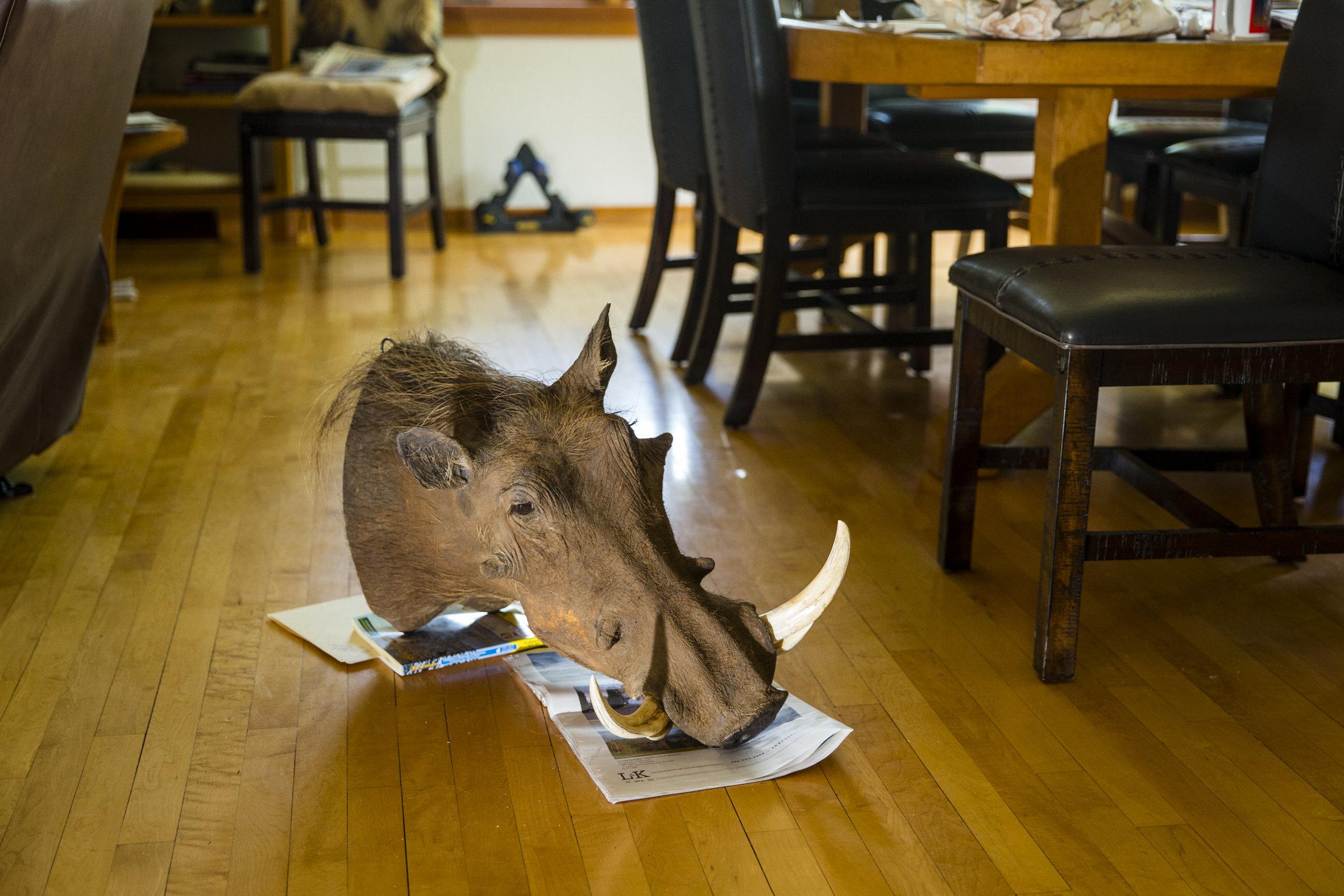20160504_Bighorn_103.jpg