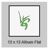 Album Flat_Icon.png