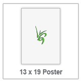 13 x 19 Poster Icon.png