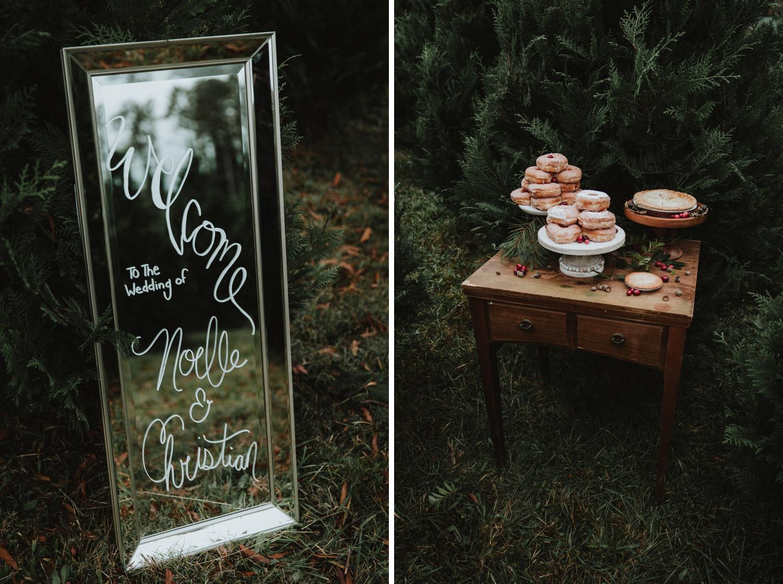Georgia-Couples-Winter-Engagement-Wedding-4.jpg