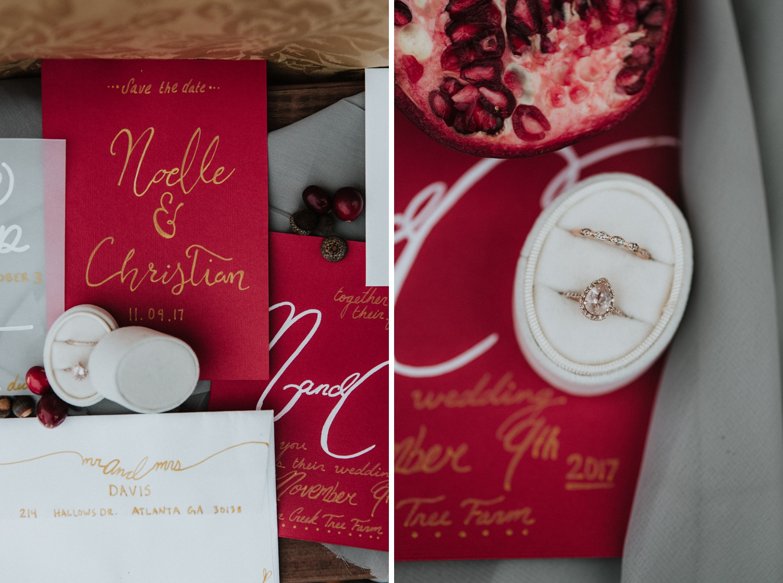 Georgia-Couples-Winter-Engagement-Wedding-3.jpg