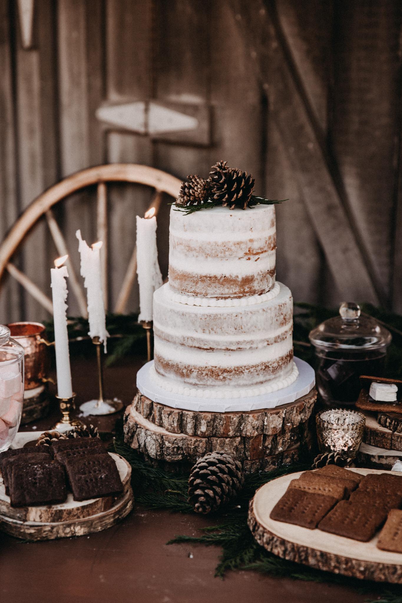MonicaLeavellPhoto-North-Georgia-Intimate-Winter-Wedding-Photographer-1.jpg