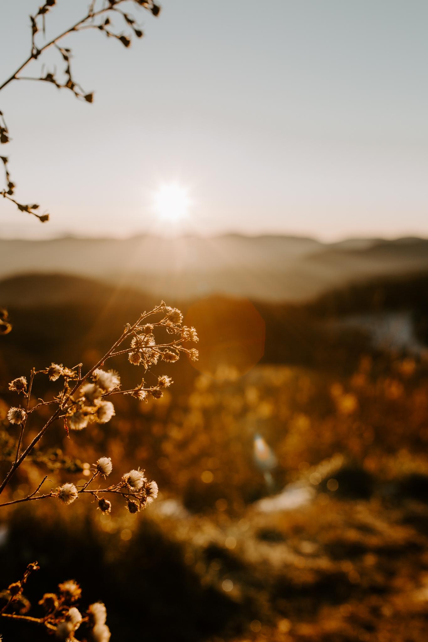 MonicaLeavellPhoto-MaxPatch-NorthCarolina-Adventure-Elopement-Photographer-JessandRemy-38.jpg