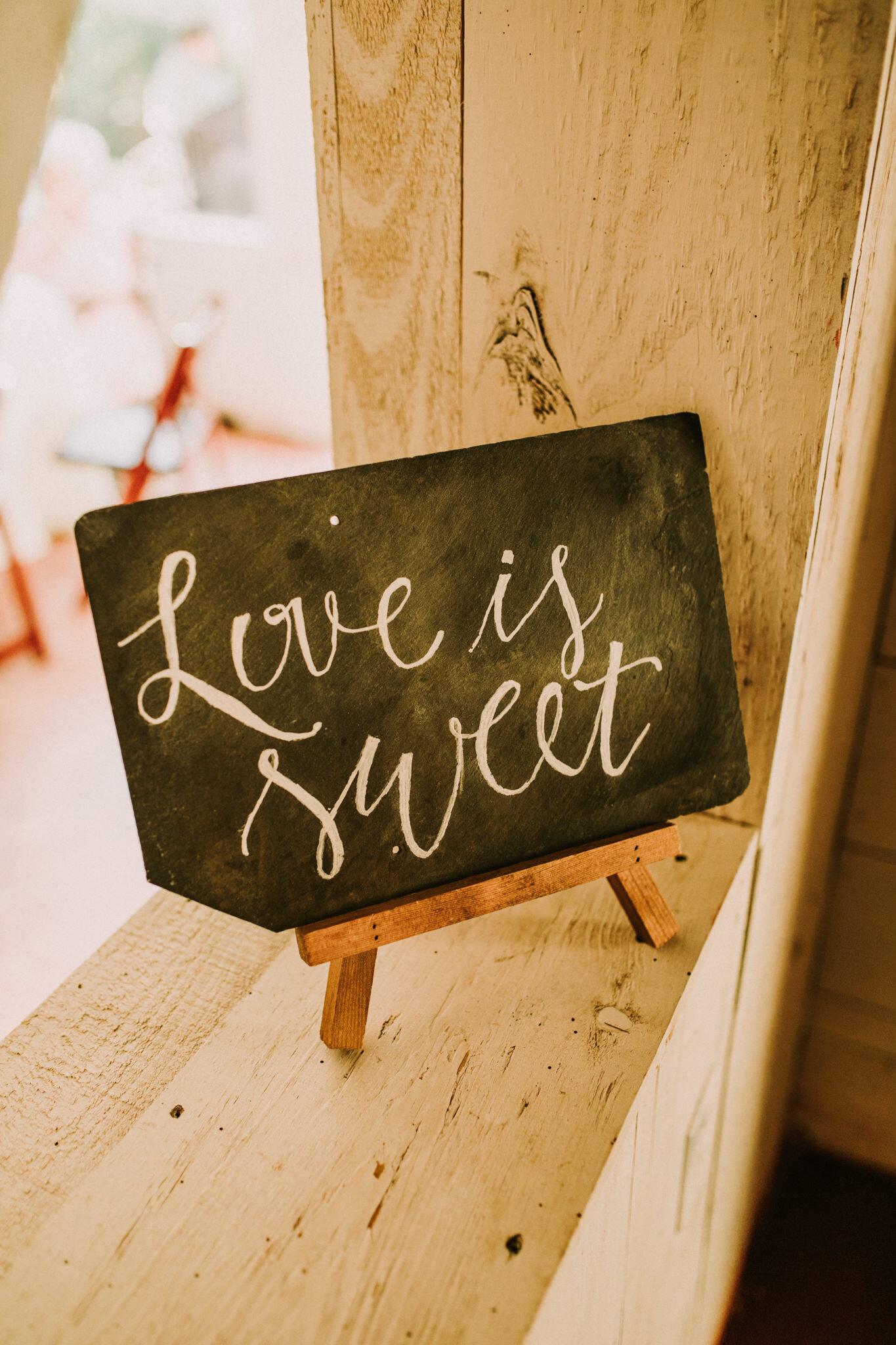 KateMatt-North-Georgia-Wedding-Photographer-Mountain-Laurel-Farm-128.jpg