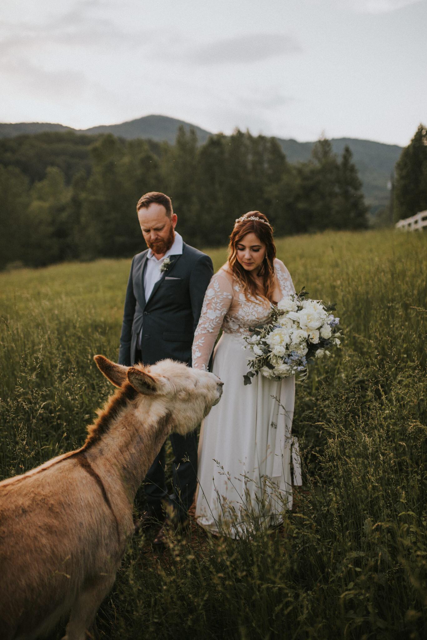 KateMatt-North-Georgia-Wedding-Photographer-Mountain-Laurel-Farm-145.jpg