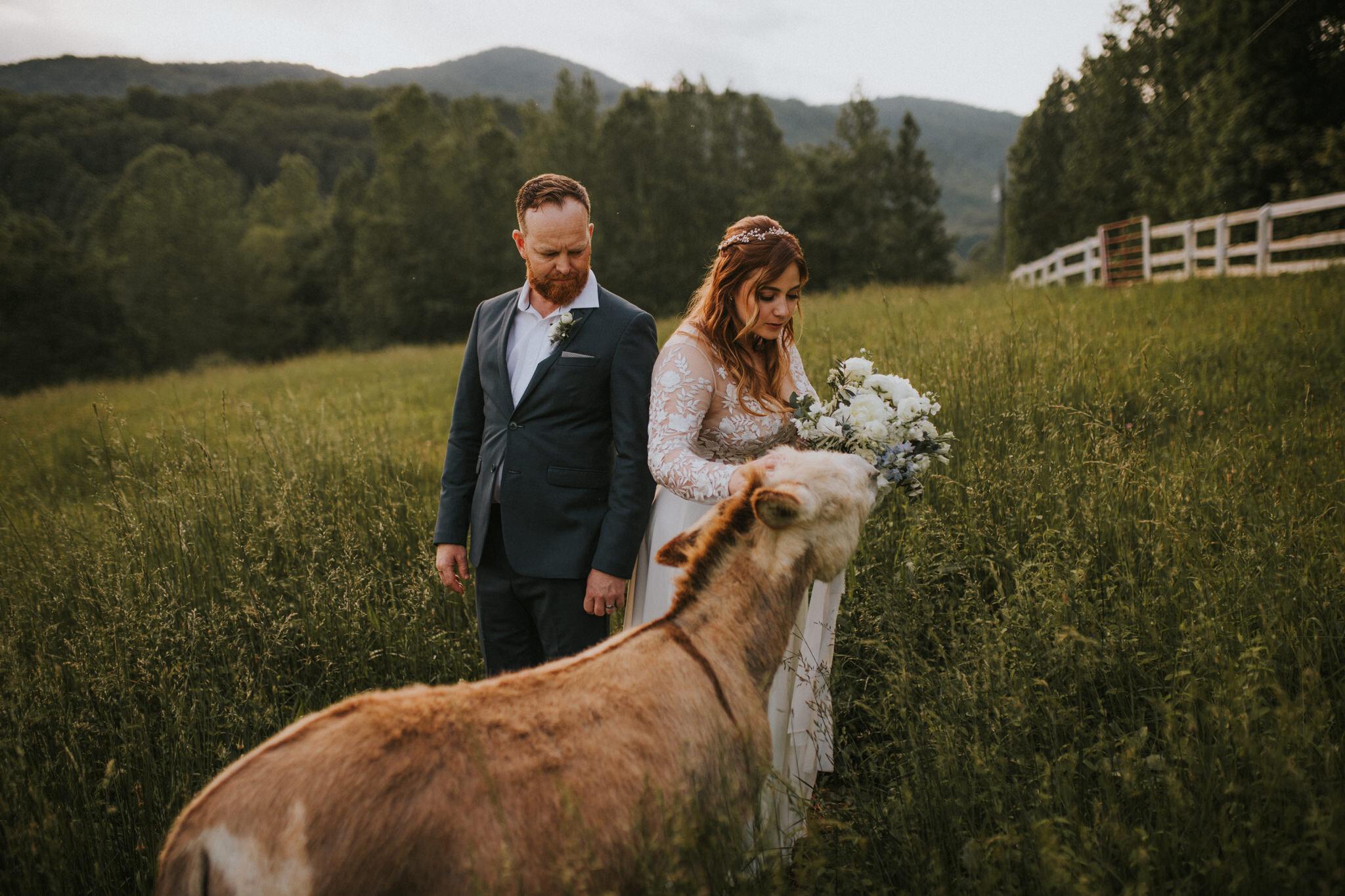 KateMatt-North-Georgia-Wedding-Photographer-Mountain-Laurel-Farm-168.jpg