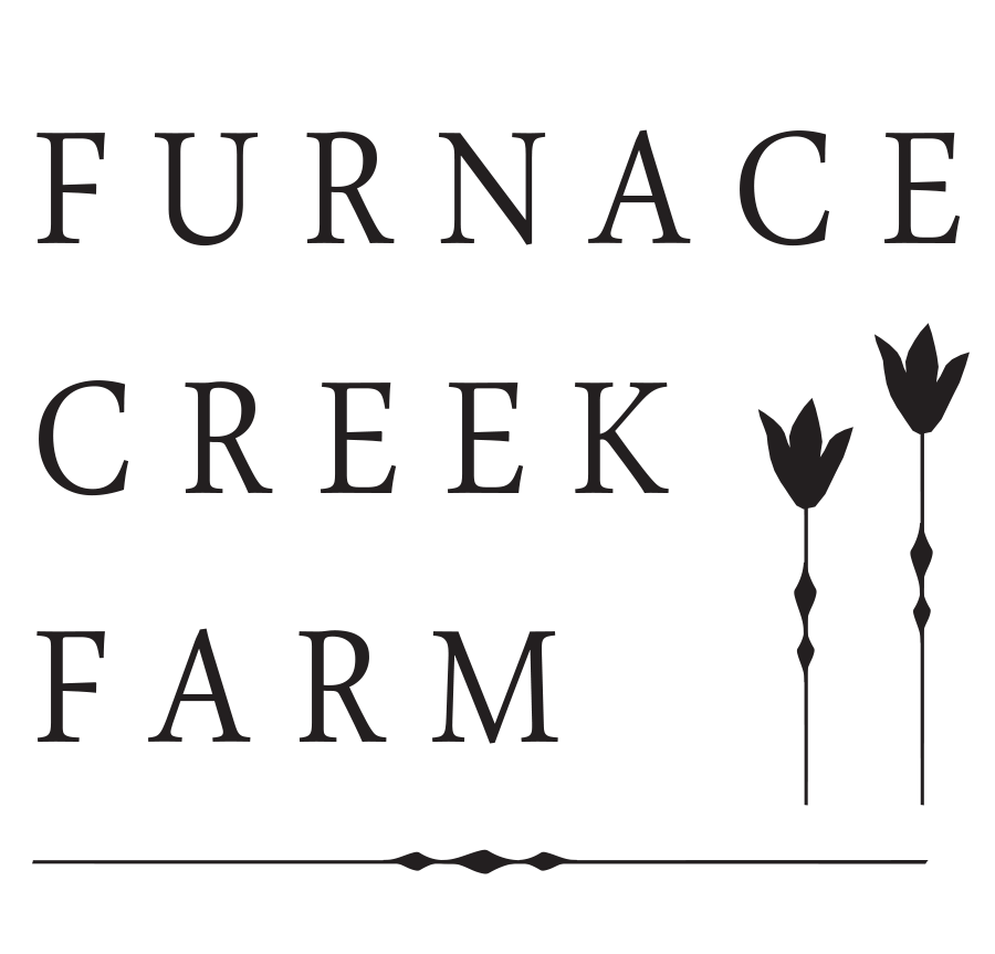 website logo final 2-4.png
